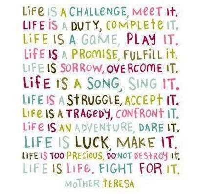 life-is-a-challenge-meet-it-life-is-duty-complete-it-challenge-quotes